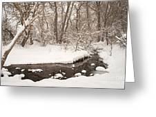 February Snow Greeting Card