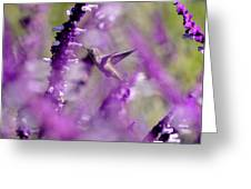 Feeding In The Midst Of Purple 1 Greeting Card
