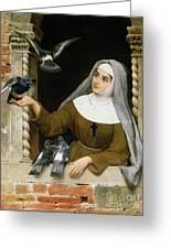 Feeding The Pigeons Greeting Card by Eugen von Blaas