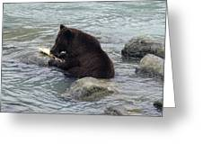 Feasting Bear Greeting Card