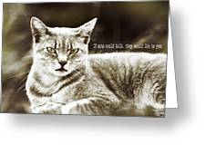 Feline Moment Quote Greeting Card