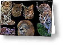 Feline Montage Greeting Card