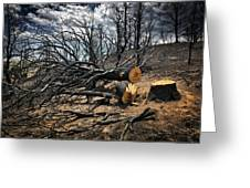 Felled After The Wildfire Greeting Card