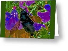 Female Carpenter Bee On Penstemons Greeting Card