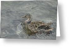 Female Duck Greeting Card