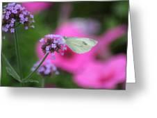 Feminine Side Of Nature Greeting Card