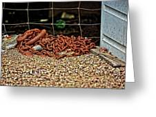 Fence And Chain Greeting Card