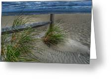 Fence And Dune Grass Greeting Card