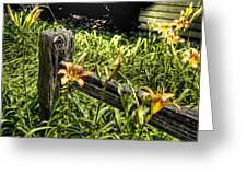 Fence And Flowers Greeting Card