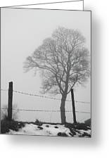 Fence And Fog Greeting Card
