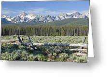 Fence And The Sawtooths Greeting Card