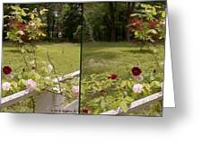 Fence Full Of Roses - Cross Your Eyes And Focus On The Middle Image Greeting Card