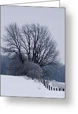 Fence Hills  Greeting Card