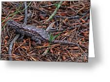 Fence Lizard Greeting Card