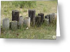 Fence Post All In A Row Greeting Card