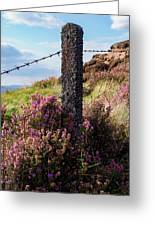 Fence Post In The Peak District Greeting Card