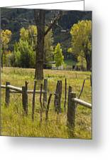 Fence Posts Greeting Card