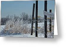 Fence Posts In Ice Greeting Card
