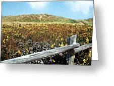 Fence With A View Greeting Card