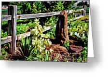 Fence-yucca-rock Greeting Card