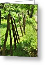 Fenceline Greeting Card