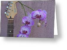 Fender Still Life Greeting Card