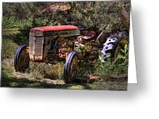 Ferguson Tractor Greeting Card