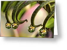 Fern And Plumeria Greeting Card