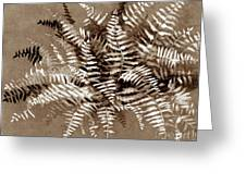 Fern In Sepia Greeting Card