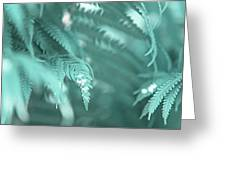 Fern Leaves Abstract 4. Nature In Alien Skin Greeting Card