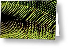 Fern-palm Abtract Greeting Card