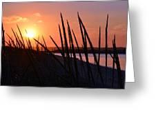 Ferry Beach Greeting Card