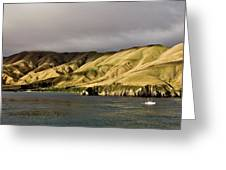 Ferry View Picton New Zealand Greeting Card