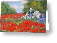 Festival Of Poppies Greeting Card