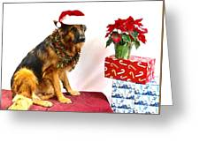 Festive Oskar Greeting Card