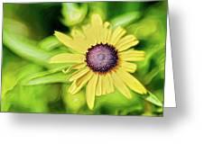 Fibonacci In The Light Greeting Card