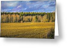 Field And Sky.  Greeting Card