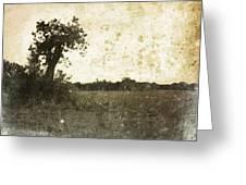 Field. Greeting Card
