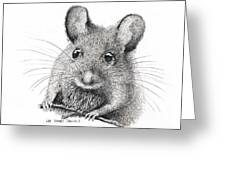 Field Mouse Or Meadow Vole Greeting Card