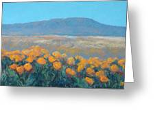 Field Of Dreams Greeting Card by Debra Mickelson