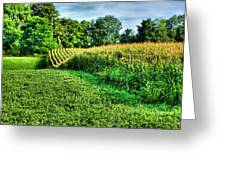 Field Of Dreams Iv Greeting Card
