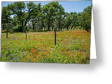 Field Of Fire Greeting Card