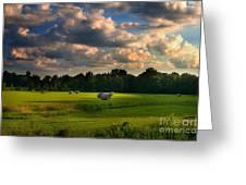 Field Of Grace Greeting Card by T Lowry Wilson