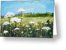Field Of Lace  Greeting Card