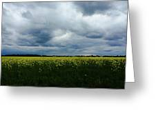 Field Of Weeds Greeting Card
