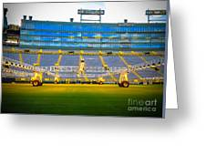 Field View Of Lambeau Greeting Card
