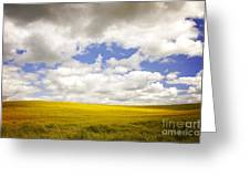 Field With Dramatic Sky. Greeting Card