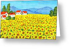 Field With Sunflowers Greeting Card