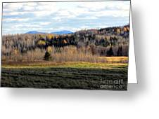 Fields And Folds Greeting Card