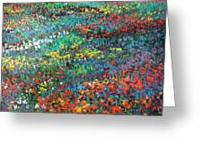 Fields Of Color Greeting Card